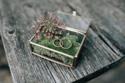 Ringkissen Ringe Hochzeit